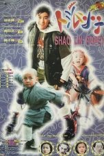 Nonton Streaming Download Drama Shaolin Popey (1994) jf Subtitle Indonesia